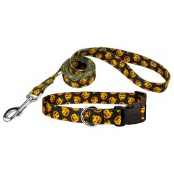 Happy Jack Deluxe Featherweight Dog Collar & Leash - Extra Small