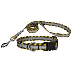 Industrial Ramp Deluxe Dog Collar & Leash Closeout