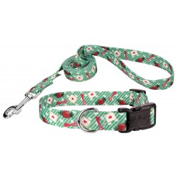 Love Letters Deluxe Dog Collar & Leash