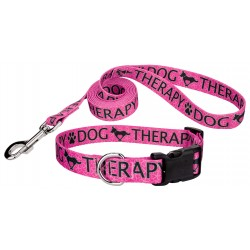 Pink Therapy Deluxe Dog Collar & Leash