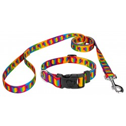 Rainbow Hearts Deluxe Dog Collar & Leash
