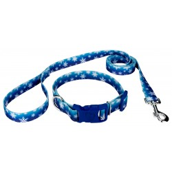 Winter Wonderland Deluxe Dog Collar & Leash
