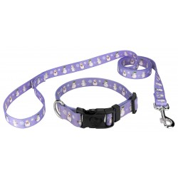 Snowman Deluxe Dog Collar & Leash