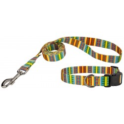 Spring Pines Deluxe Dog Collar & Leash