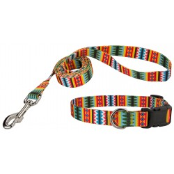 Summer Pines Deluxe Dog Collar & Leash