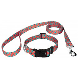 Tropical Tango Deluxe Dog Collar & Leash