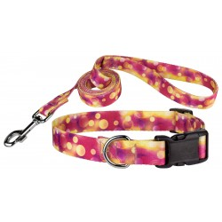 Unfocused Affection Deluxe Dog Collar & Leash