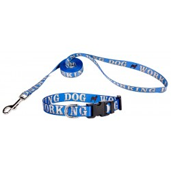 Working Dog Industrial Deluxe Featherweight Dog Collar & Leash - Extra Small