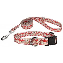 Where's Merry Deluxe Dog Collar & Leash