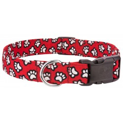 Deluxe Red with White Paws Designer Dog Collar