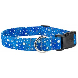 Deluxe Tropical Bubbles Designer Dog Collar