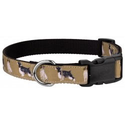 Deluxe Springer Spaniel Ribbon Dog Collar Limited Edition - Medium