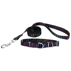 Colorful Arrows Martingale Dog Collar & Leash - Extra Small
