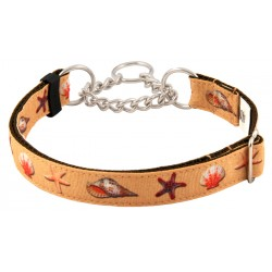 Seashells Grosgrain Ribbon Half Check Dog Collar