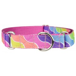 Spring Kaleidoscope Grosgrain Ribbon Martingale Dog Collar-Medium-Limited Edition
