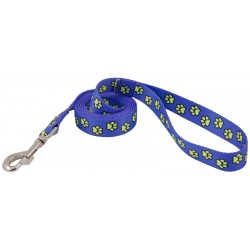 Blue Busy Paws Leash