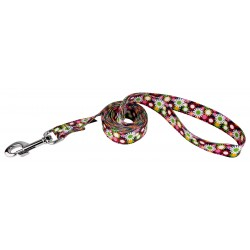 Daisy Fields Dog Leash