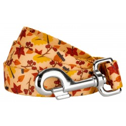 Fall Foliage Dog Leash