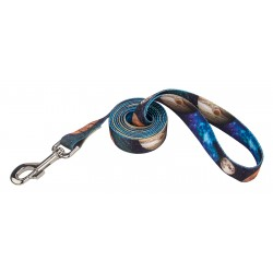 Galactic Neighbors Dog Leash