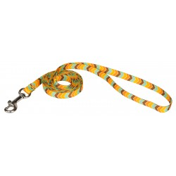 3/8 Inch Harvest Chevron Leash
