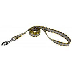 Industrial Ramp Dog Leash Limited Edition