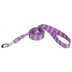 10 - 1 Inch Dog Leashes