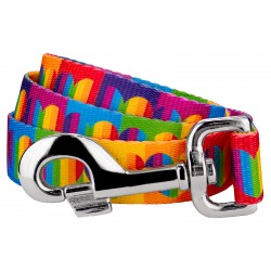Rainbow Hearts Dog Leash
