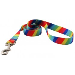 1 Inch Rainbow Stripes Leash