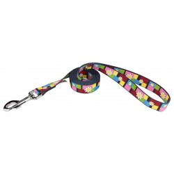 Spring Daisies Dog Leash
