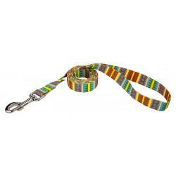 Spring Pines Dog Leash