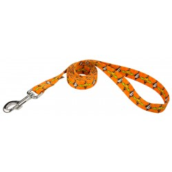 When Pumpkins Fly Dog Leash