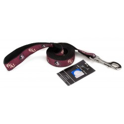 Florida State Seminoles Ribbon Dog Leash