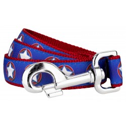 American Star Ribbon Dog Leash