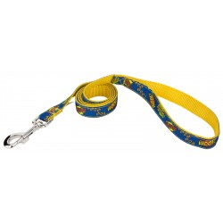 Blue Super Dog Ribbon Leash