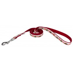 Gifts of Love Ribbon Dog Leash Limited Edition