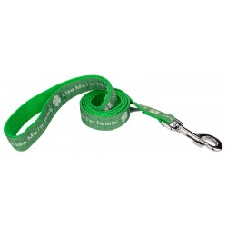 1 Inch Kiss Me I'm Irish Ribbon Dog Leash
