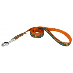 Tie Dye Stripes Ribbon Dog Leash