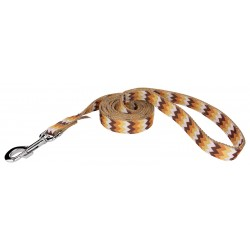 1 Inch Allegheny Autumn Ribbon Double Sided Dog Leash - 6 Foot Limited Edition