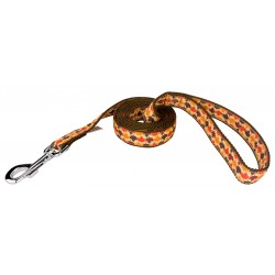 Nature Walk Ribbon Double Sided Dog Leash