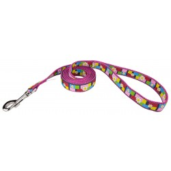 Spring Daisies Ribbon on Rose Double Sided Leash