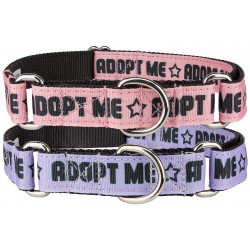 10 - Adoption Pack Ribbon Martingale Dog Collars