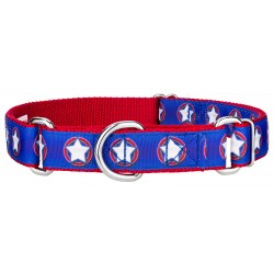 American Star Ribbon Martingale Dog Collar