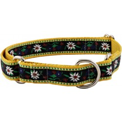 Edelweiss Designer Ribbon Martingale Dog Collar
