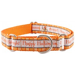 Pirate Halloween Ribbon Martingale Dog Collar Limited Edition