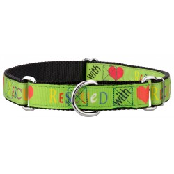 Rescued with Love Ribbon Martingale Dog Collar