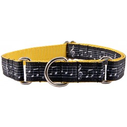 Sheet Music on Gold Grosgrain Ribbon Martingale Collar