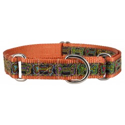 Stitched Bones Woven Ribbon on Orange Martingale Dog Collar Limited Edition