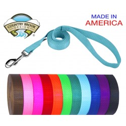 1 Inch Nylon Dog Leash (Various Colors & Lengths)