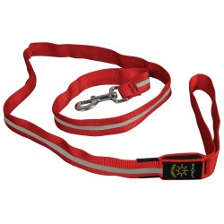 Nite Ize® Nite Dawg Red LED Pet Leash - 5 Feet