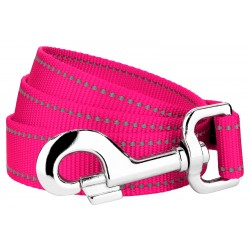 1 Inch Hot Pink Reflective Nylon Double Handle Dog Leash